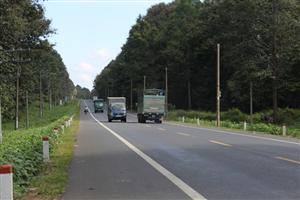 Chuẩn bị xây dựng tuyến cao tốc Dầu Giây-Tân Phú