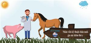 Nhân viên kỹ thuật chăn nuôi gia súc kiêm thú y